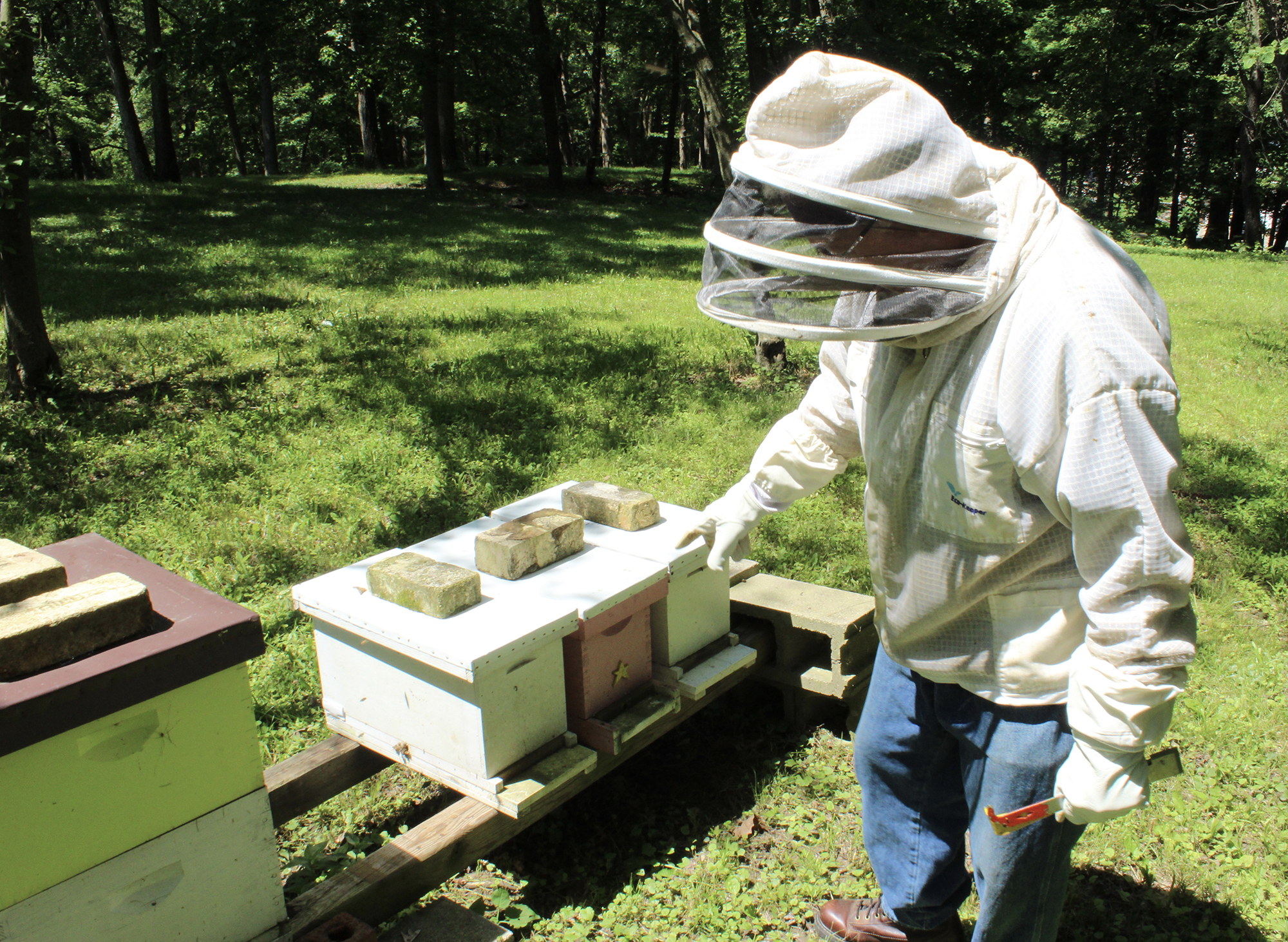 This is a photo of beekeeper John Suko and his bee hives.